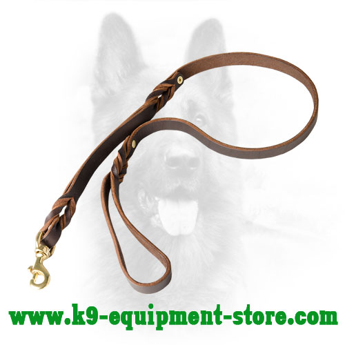 Canine Leather Dog Leash with Decorative Braids