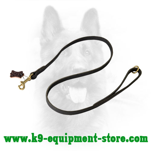 Canine Leather Dog Leash for Walking and Training
