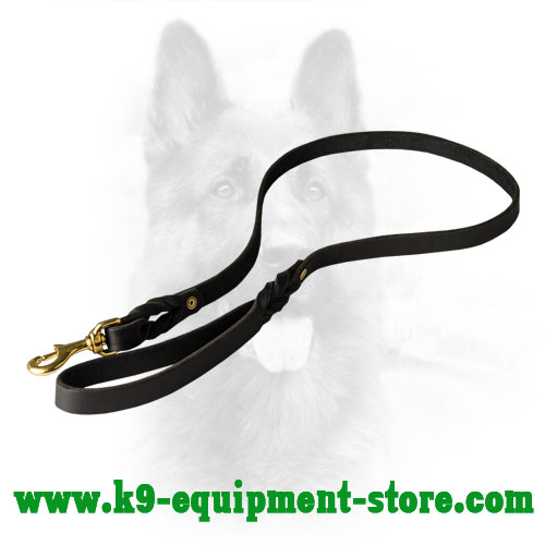Canine Leather Dog Lead for Walking and Training