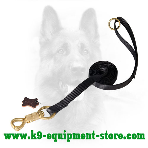 Upgraded K9 Nylon Dog Leash for All Weather