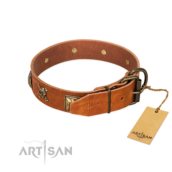 Top notch leather dog collar with strong embellishments