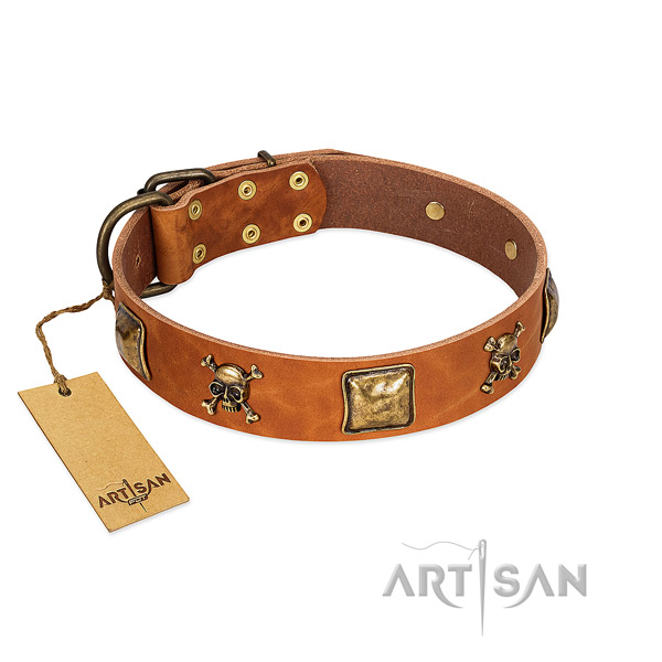 Trendy genuine leather dog collar with corrosion resistant adornments