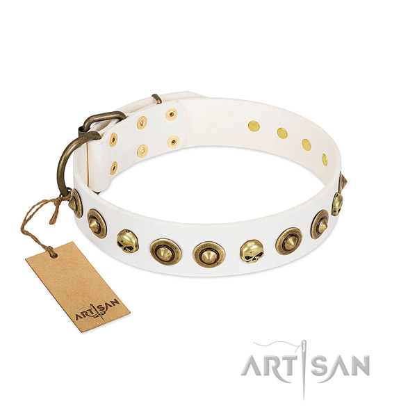Natural leather collar with stylish adornments for your pet