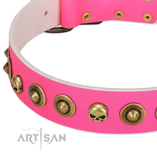 Remarkable embellishments on genuine leather collar for your four-legged friend