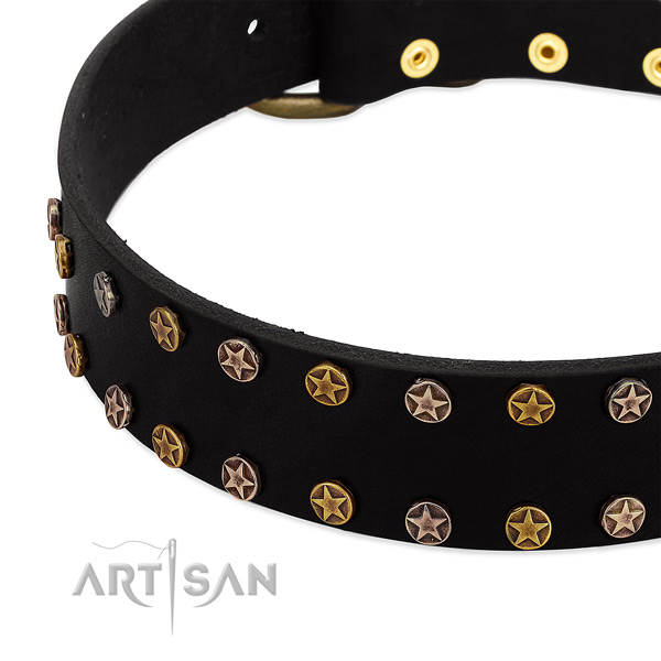 Stylish embellishments on natural leather collar for your doggie