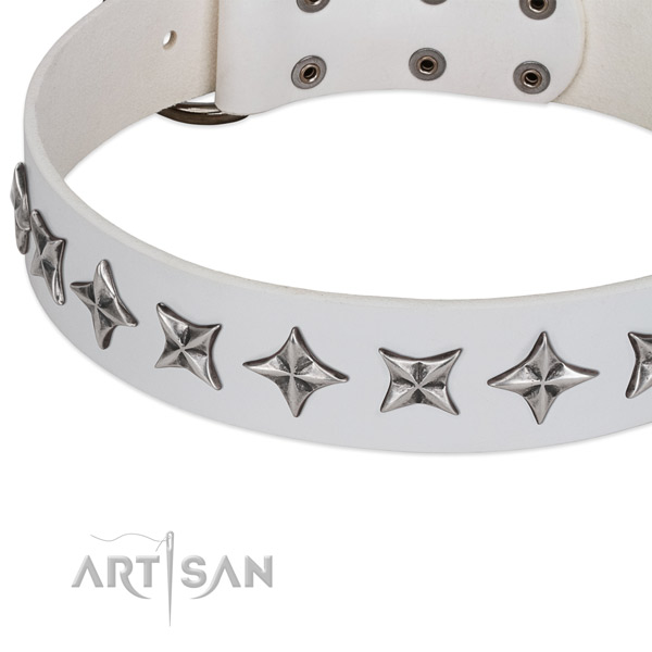 Daily walking studded dog collar of top notch genuine leather
