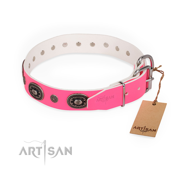 Everyday use perfect fit dog collar with corrosion resistant hardware