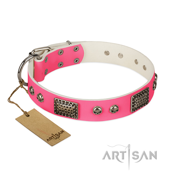 Easy to adjust natural leather dog collar for stylish walking your pet
