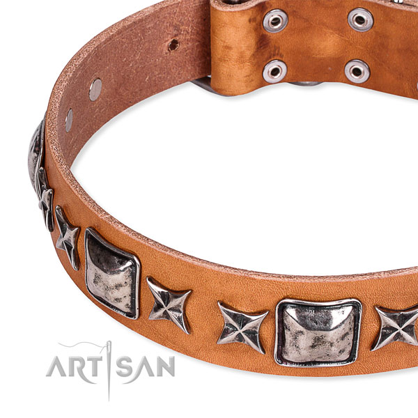 Handy use decorated dog collar of best quality full grain leather