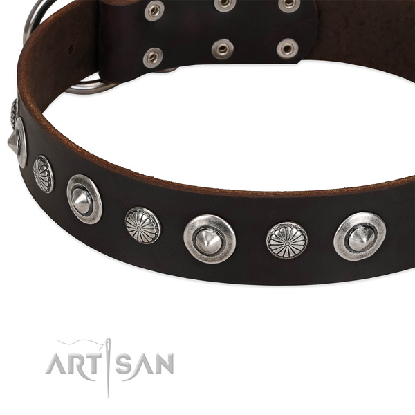 Unique adorned dog collar of best quality full grain natural leather