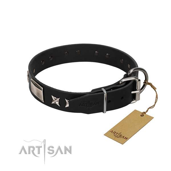 Reliable natural leather dog collar with strong traditional buckle