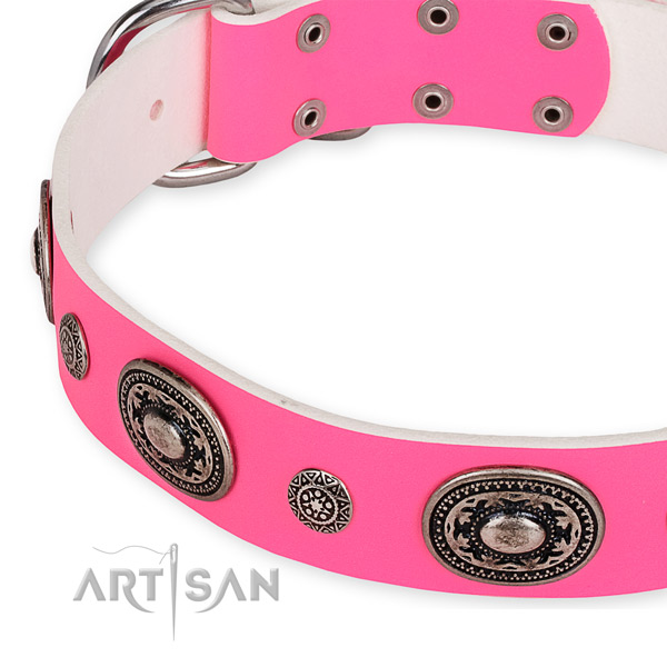 Leather dog collar with fashionable rust-proof embellishments