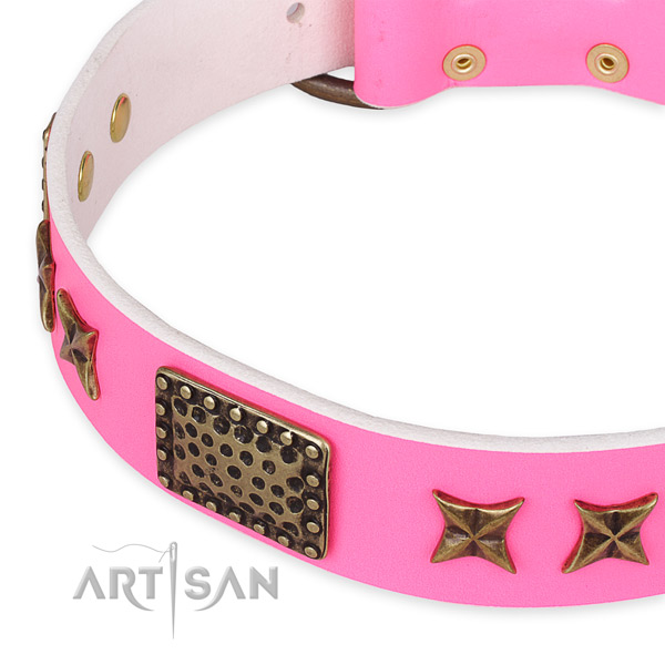 Full grain natural leather collar with rust-proof buckle for your attractive canine
