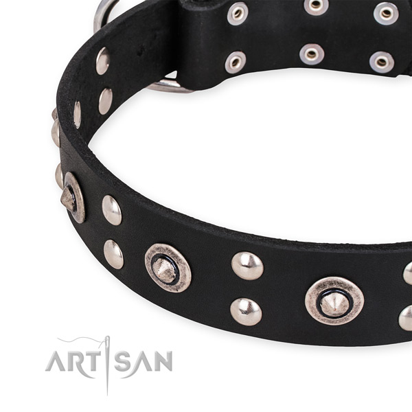 Leather collar with corrosion resistant buckle for your lovely pet