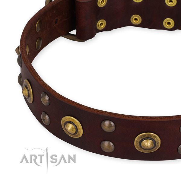 Genuine leather collar with reliable buckle for your beautiful pet