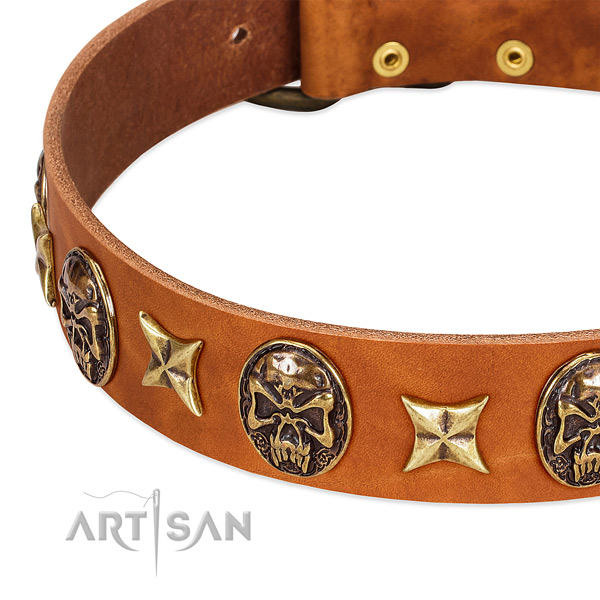 Corrosion proof traditional buckle on natural genuine leather dog collar for your doggie