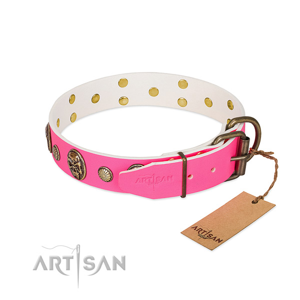 Rust-proof traditional buckle on genuine leather dog collar for your four-legged friend