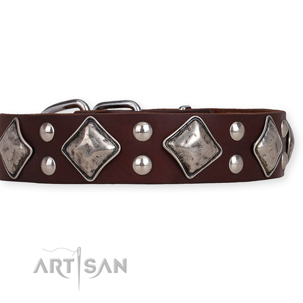 Natural leather dog collar with extraordinary reliable decorations