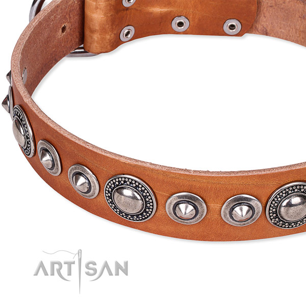 Comfortable wearing studded dog collar of high quality full grain genuine leather