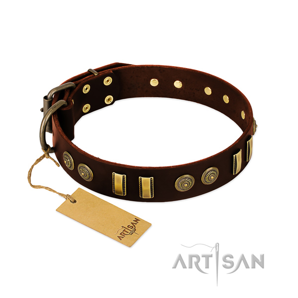 Rust-proof decorations on natural leather dog collar for your canine