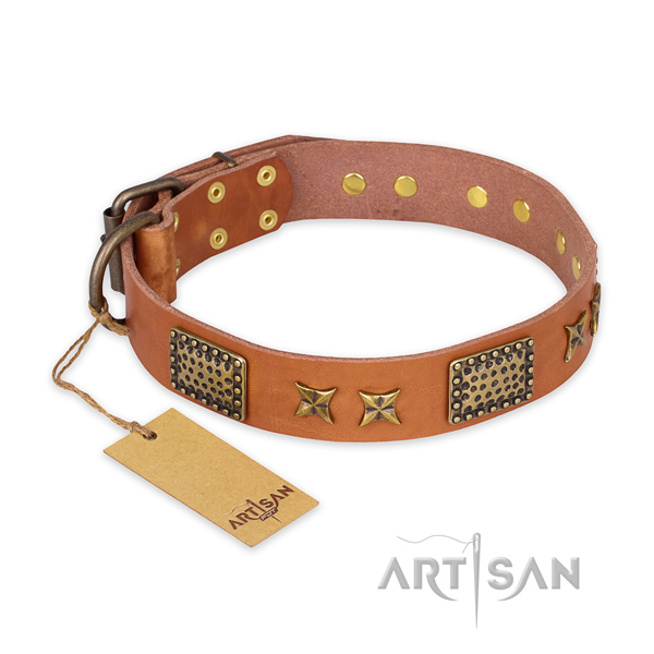 Handmade leather dog collar with durable traditional buckle