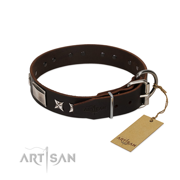 Amazing collar of leather for your handsome dog