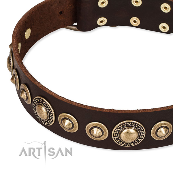 Top notch leather dog collar made for your impressive four-legged friend