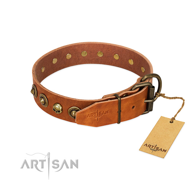 Natural leather collar with trendy adornments for your canine