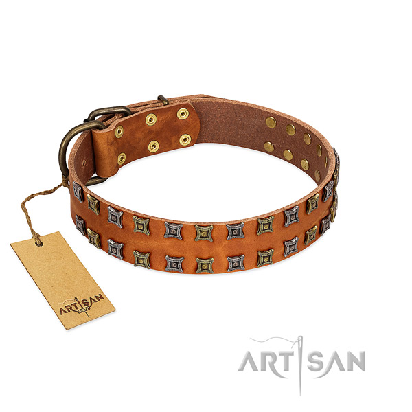 Reliable natural leather dog collar with decorations for your canine