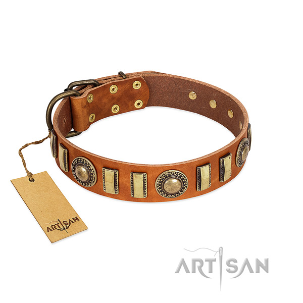 Studded natural leather dog collar with reliable fittings