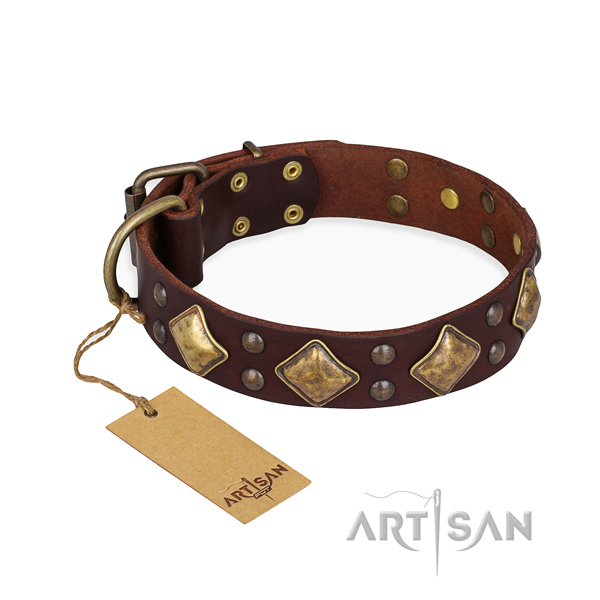 Daily walking exquisite dog collar with corrosion resistant traditional buckle