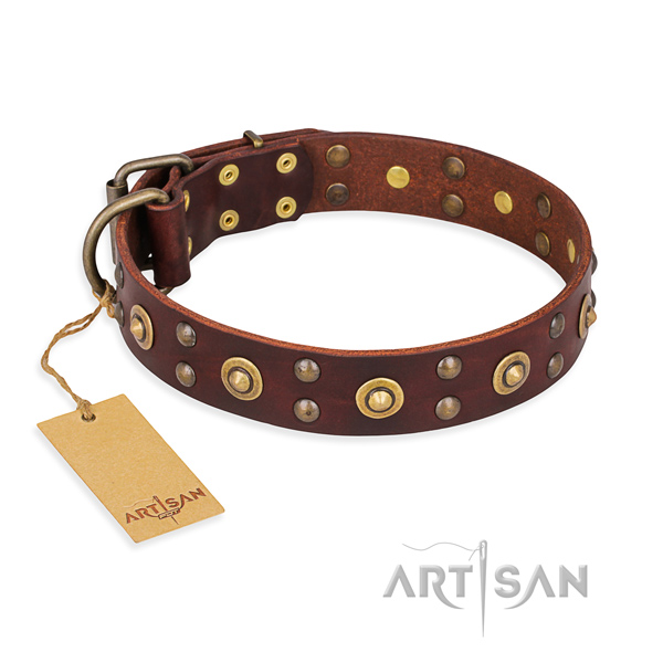 Exceptional full grain leather dog collar with corrosion resistant hardware