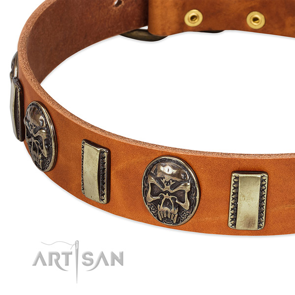Strong traditional buckle on genuine leather dog collar for your four-legged friend