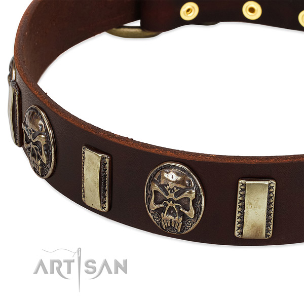 Rust-proof hardware on natural genuine leather dog collar for your pet