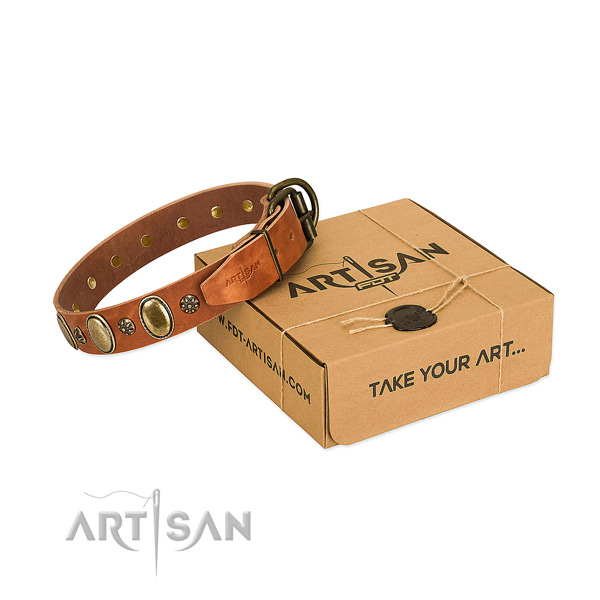 Stylish walking quality full grain genuine leather dog collar with adornments