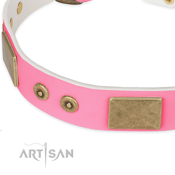 Full grain natural leather dog collar with embellishments for everyday walking