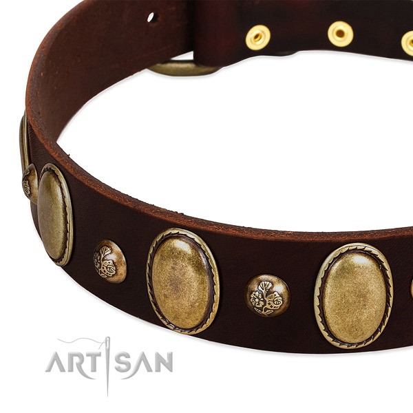 Full grain leather dog collar with trendy embellishments