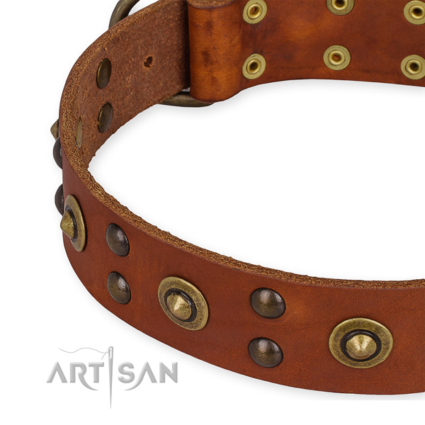 Leather collar with reliable D-ring for your beautiful dog