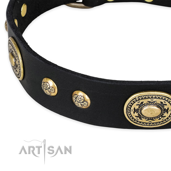 Handcrafted genuine leather collar for your handsome pet
