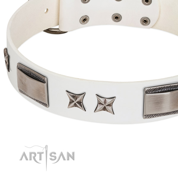 Soft full grain leather dog collar with reliable traditional buckle