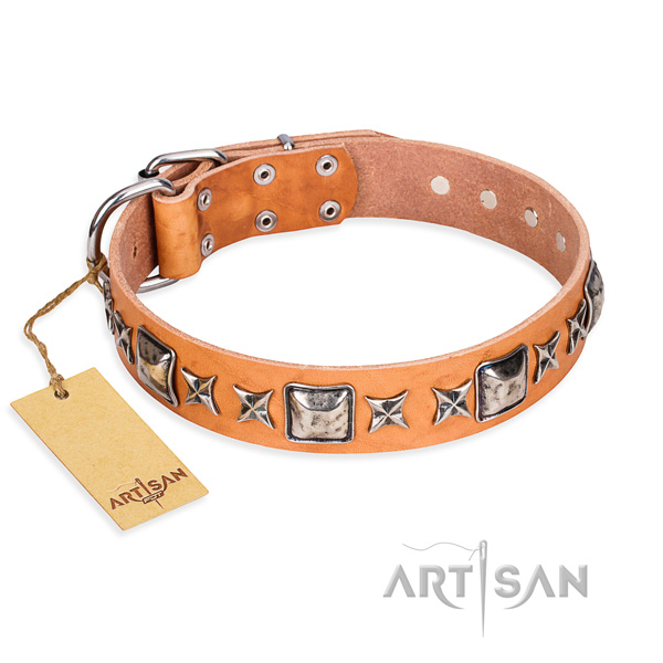Basic training dog collar of strong full grain genuine leather with embellishments
