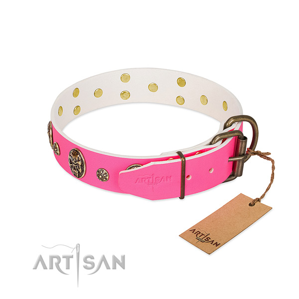 Rust-proof fittings on genuine leather collar for basic training your doggie
