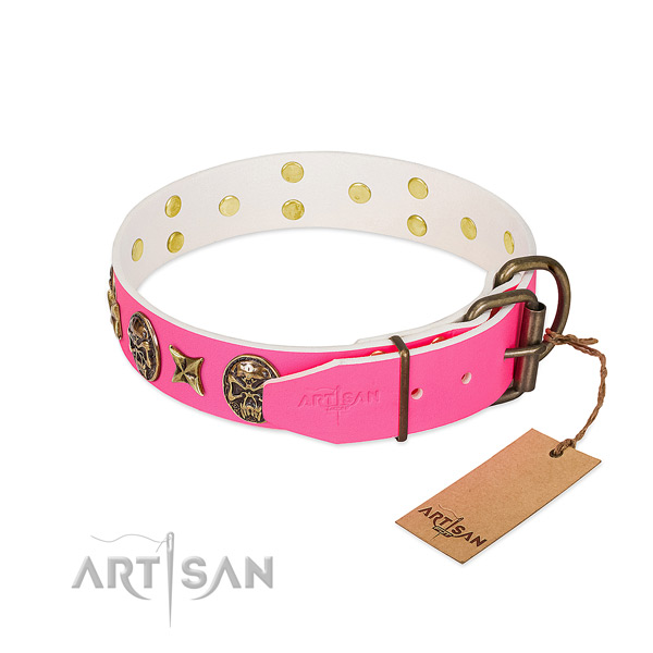 Reliable fittings on full grain natural leather collar for walking your four-legged friend