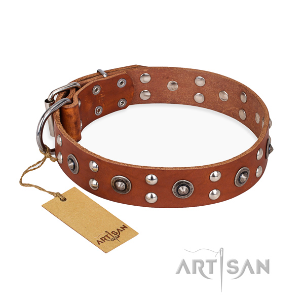 Everyday walking handmade dog collar with rust-proof fittings