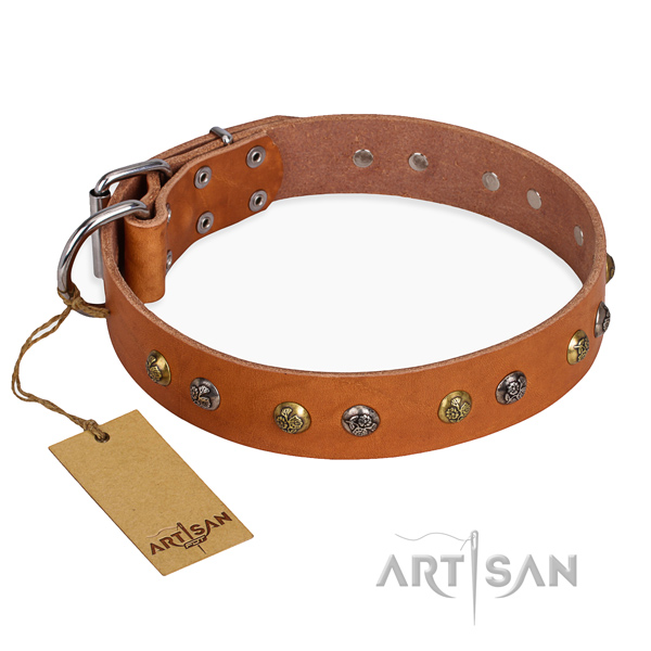 Handy use fine quality dog collar with strong hardware