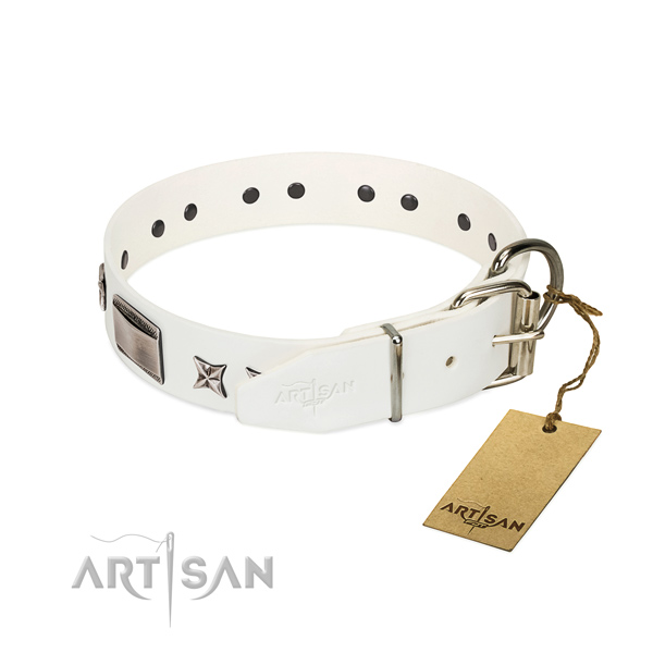 Inimitable collar of genuine leather for your impressive dog