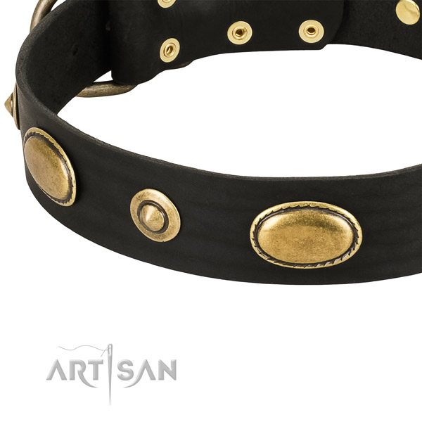 Strong fittings on leather dog collar for your canine