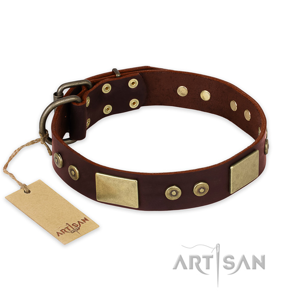 Stunning full grain natural leather dog collar for daily walking