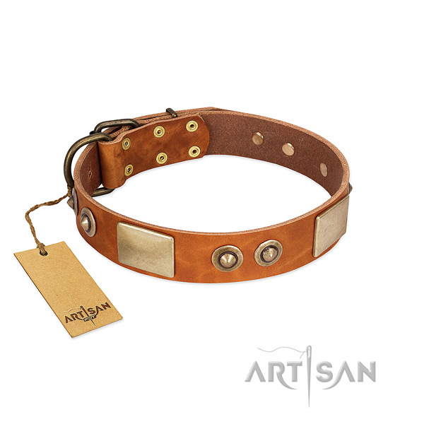 Easy to adjust full grain genuine leather dog collar for walking your four-legged friend
