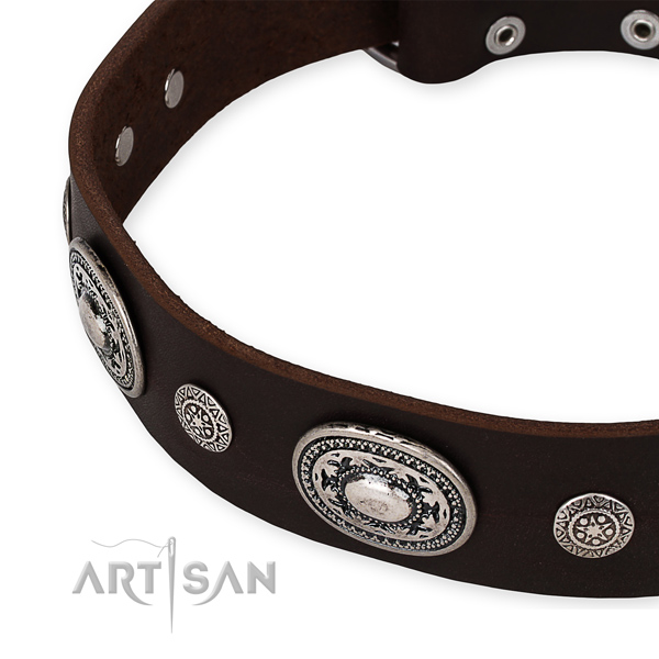 Quality natural genuine leather dog collar created for your handsome four-legged friend